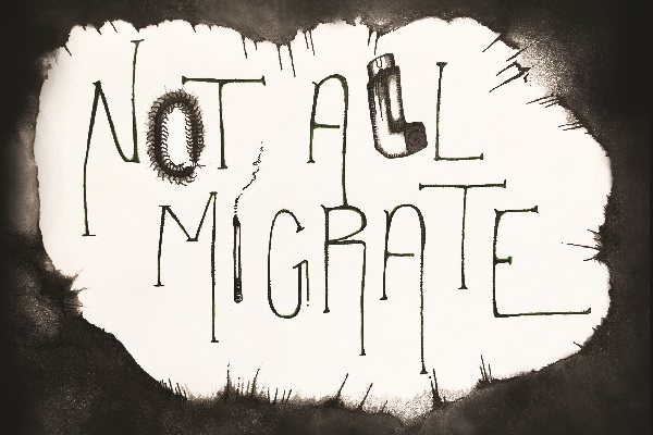 "Debut author uses lived experience to explore the intense emotions of addiction in ""Not All Migrate"" 