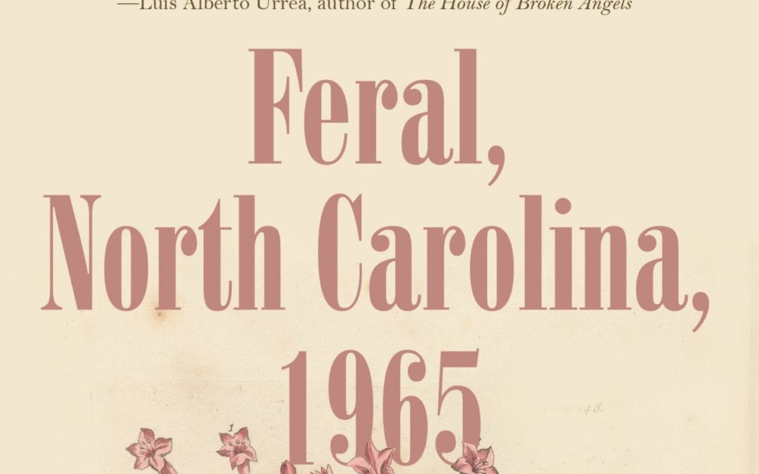 """""""Feral, NC, 1965"""" A Powerful Coming of Age Tale 