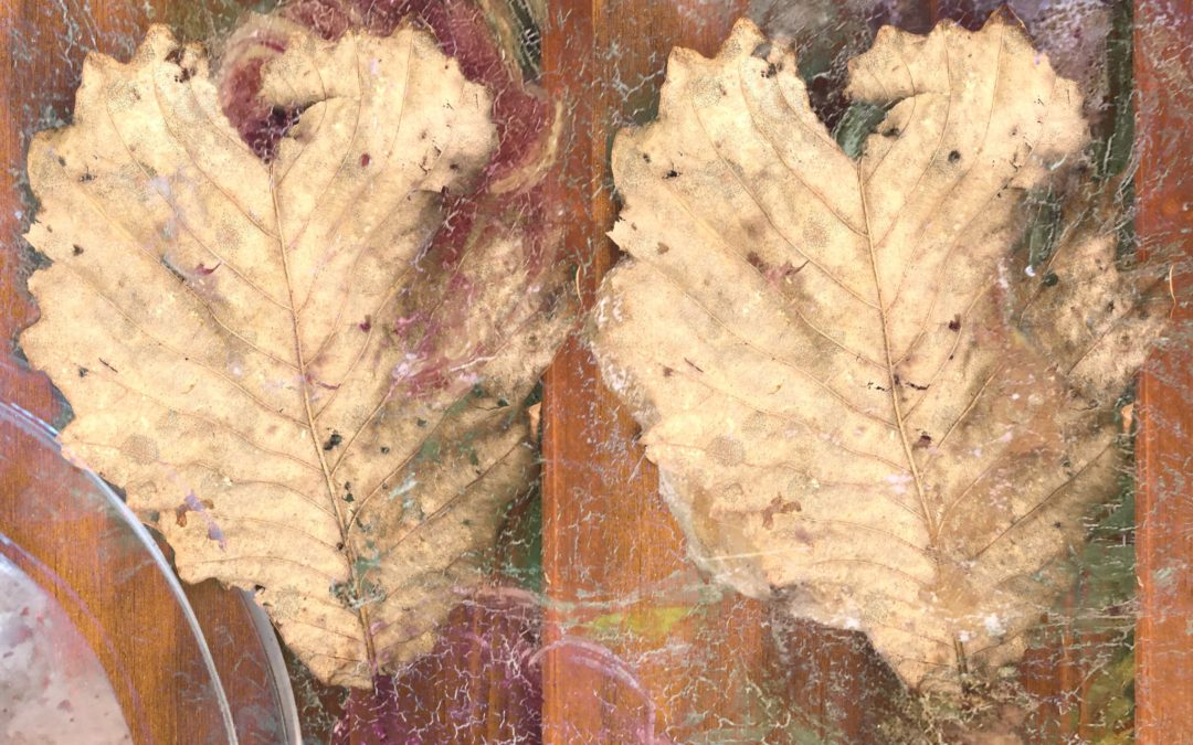 Two Leaves | Visual Art