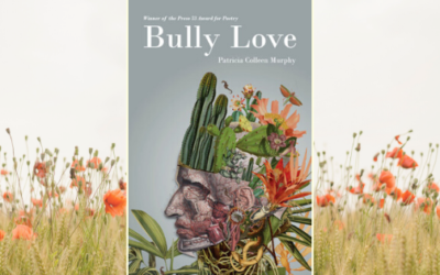Love, Bully Love | Book Review